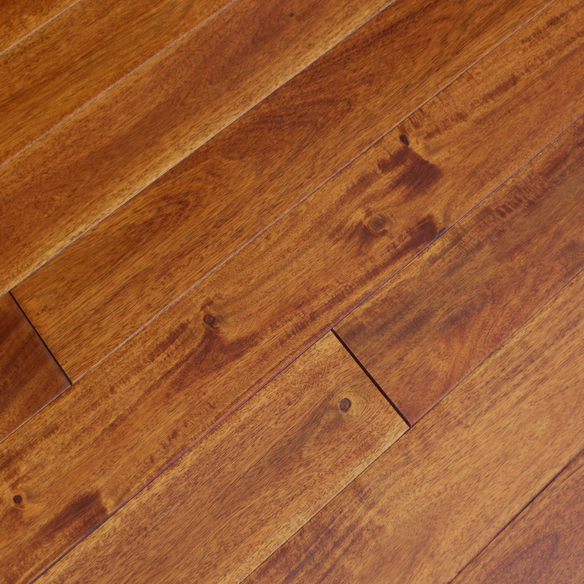 Acacia champagne eastern flooring inc prefinished for Acacia hardwood flooring